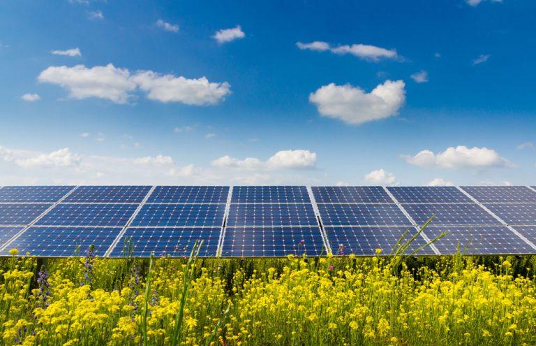 I pannelli solari organici realizzati con materiale organico