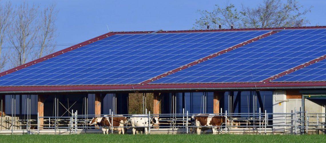 fotovoltaico-per-agricoltura